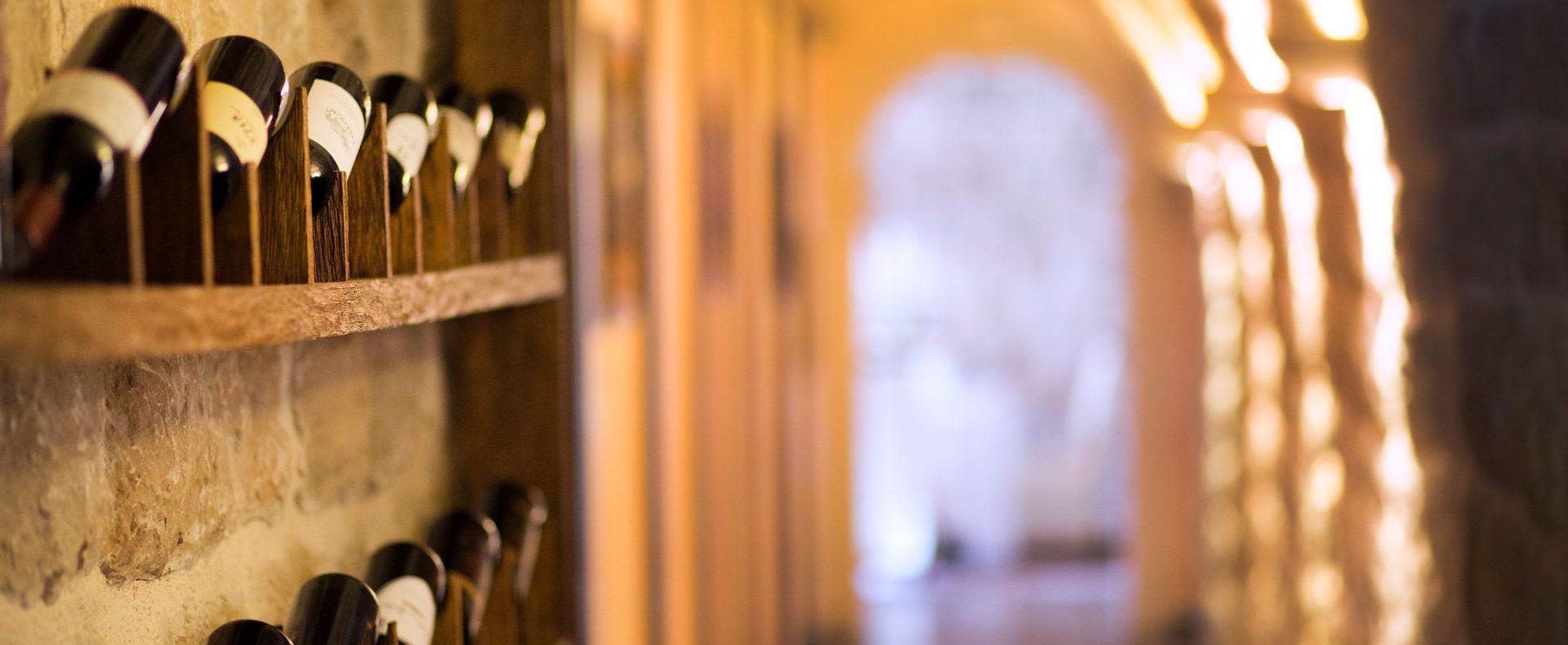 Wine tasting in wine cellars Dubrovnik holiday villa